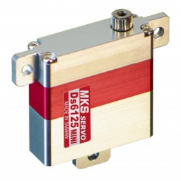 MKS DS6125-Mini Wing Servo