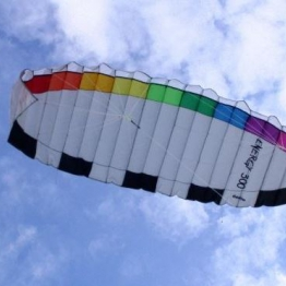 Didakites 21030 Energy 300 Power Kite