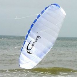 Didakites 21522 Silverwing Power Kite