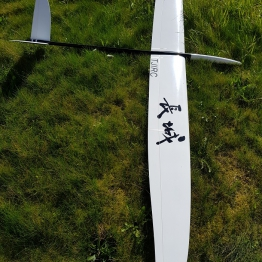 TJIRC The Wall 2.8Metre F3F Glider